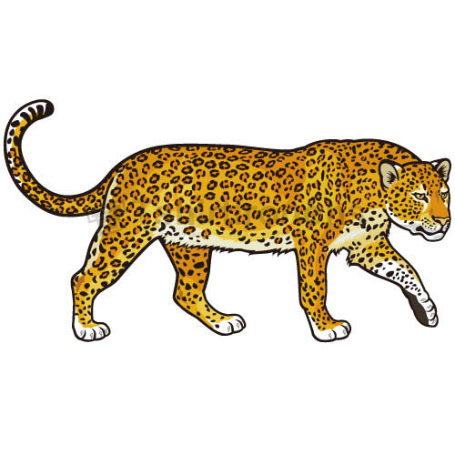 Cheetah T-shirts Iron On Transfers N5375