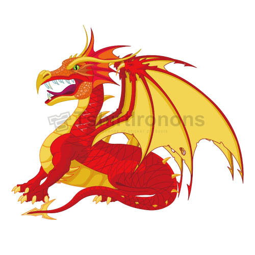 Dragon T-shirts Iron On Transfers N5438