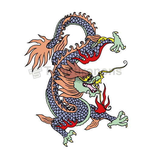 Dragon T-shirts Iron On Transfers N5452