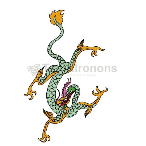 Dragon T-shirts Iron On Transfers N5453