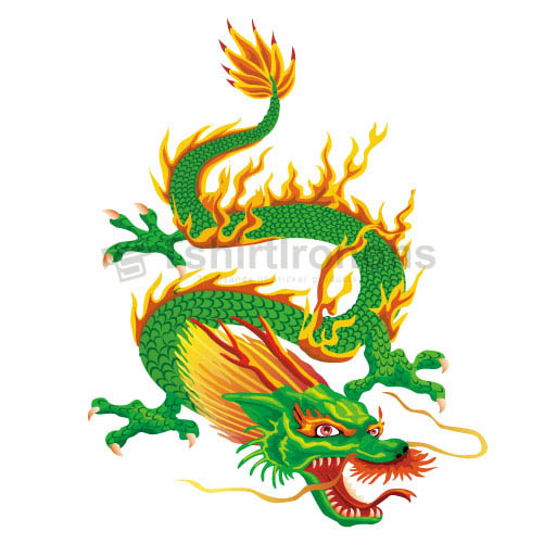 Dragon T-shirts Iron On Transfers N5469
