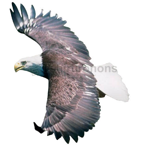 Eagle T-shirts Iron On Transfers N5501