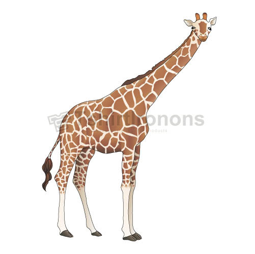 Giraffe T-shirts Iron On Transfers N8094