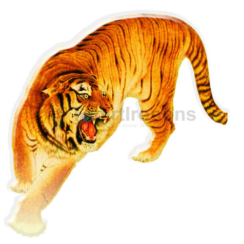 Tiger T-shirts Iron On Transfers N5605