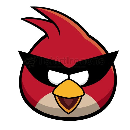 Angry Birds T-shirts Iron On Transfers N2414