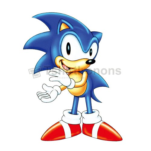 Sonic the Hedgehog T-shirts Iron On Transfers N7977