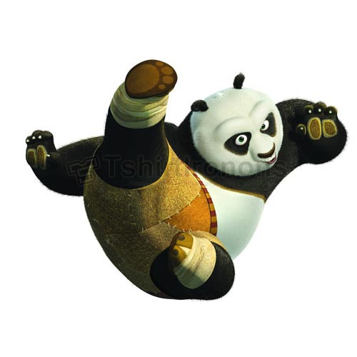 Kung Fu Panda T-shirts Iron On Transfers N2682