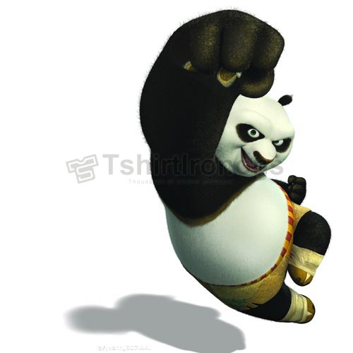 Kung Fu Panda T-shirts Iron On Transfers N2683