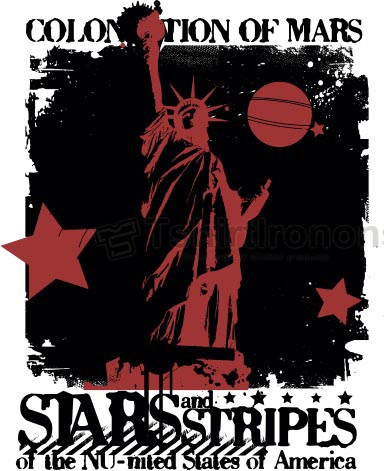 Statue of Liberty T-shirts Iron On Transfers N8076