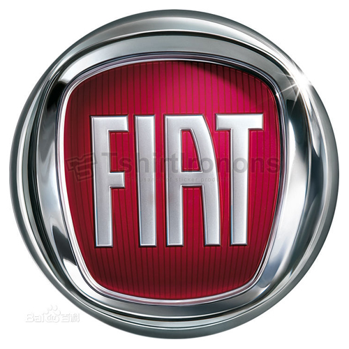 FIAT T-shirts Iron On Transfers N2909