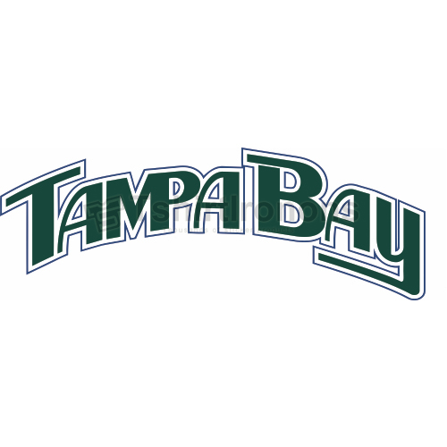 Tampa Bay Rays T-shirts Iron On Transfers N1954