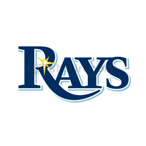 Tampa Bay Rays T-shirts Iron On Transfers N1955
