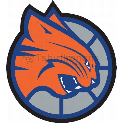 Charlotte Bobcats T-shirts Iron On Transfers N927