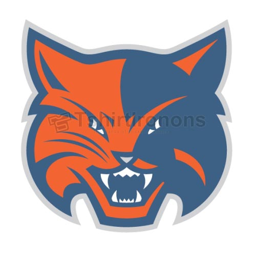 Charlotte Bobcats T-shirts Iron On Transfers N930
