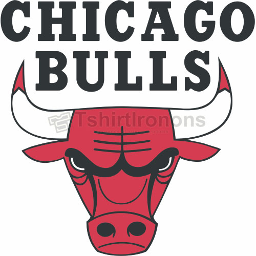 Chicago Bulls T-shirts Iron On Transfers N933