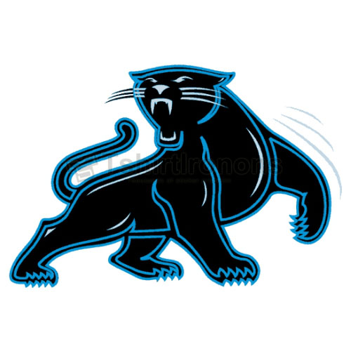 Carolina Panthers T-shirts Iron On Transfers N438