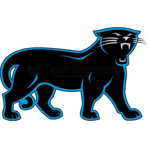 Carolina Panthers T-shirts Iron On Transfers N439