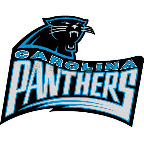 Carolina Panthers T-shirts Iron On Transfers N440