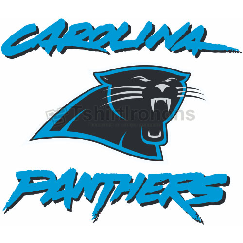 Carolina Panthers T-shirts Iron On Transfers N443