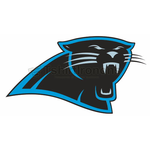 Carolina Panthers T-shirts Iron On Transfers N444