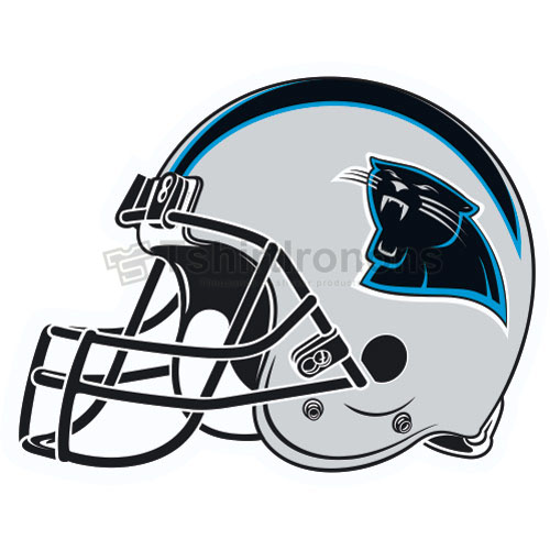 Carolina Panthers T-shirts Iron On Transfers N448