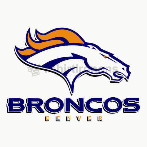 Denver Broncos T-shirts Iron On Transfers N509
