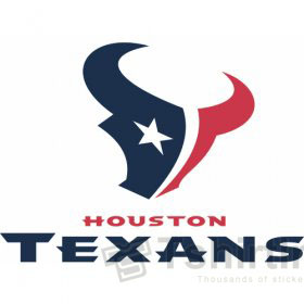 Houston Texans T-shirts Iron On Transfers N535