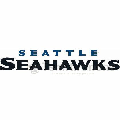 Seattle Seahawks T-shirts Iron On Transfers N752