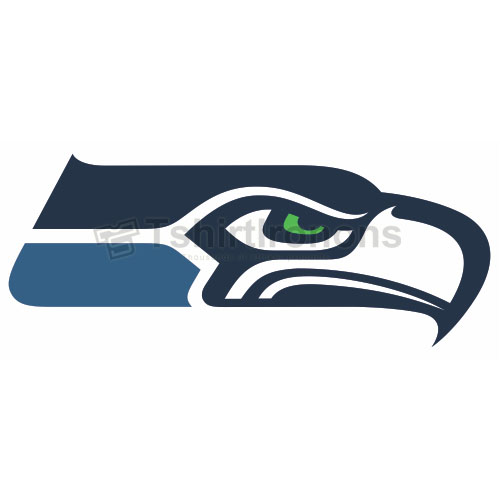 Seattle Seahawks T-shirts Iron On Transfers N753