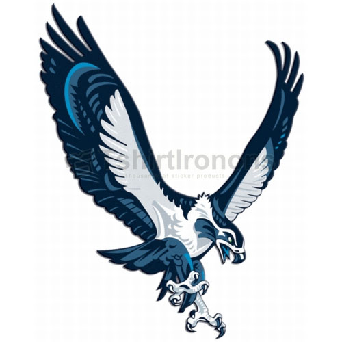 Seattle Seahawks T-shirts Iron On Transfers N756