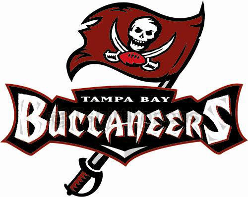 Tampa Bay Buccaneers T-shirts Iron On Transfers N828