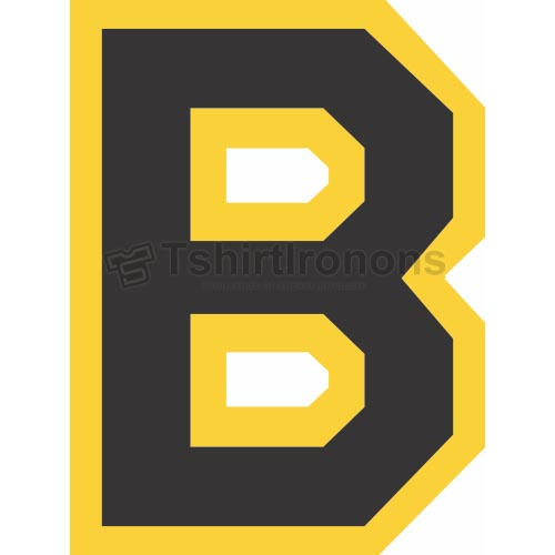 Boston Bruins T-shirts Iron On Transfers N71