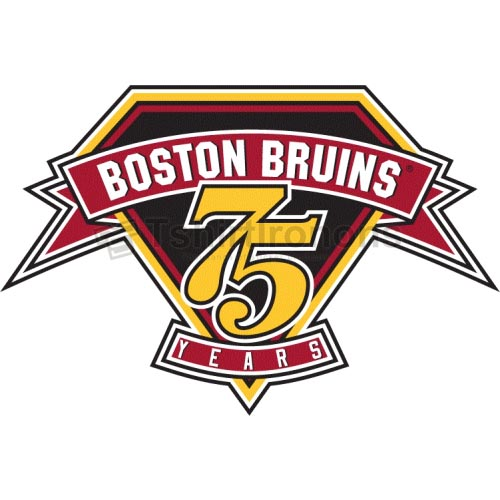 Boston Bruins T-shirts Iron On Transfers N74