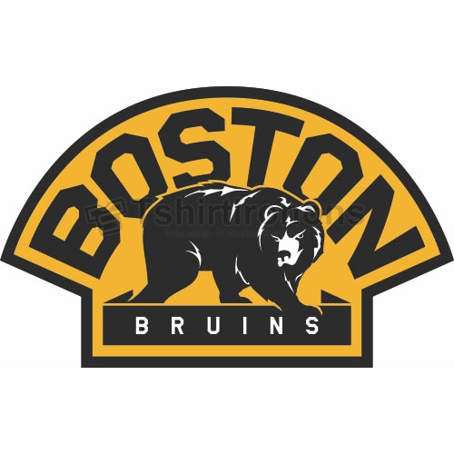 Boston Bruins T-shirts Iron On Transfers N75
