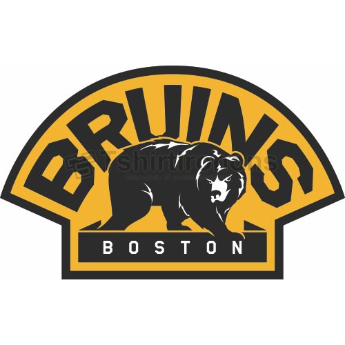 Boston Bruins T-shirts Iron On Transfers N76