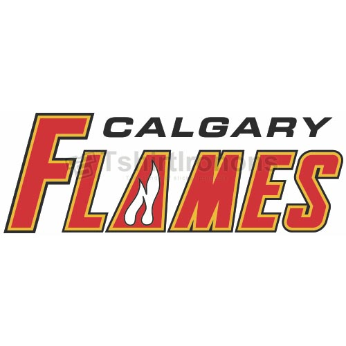 Calgary Flames T-shirts Iron On Transfers N96