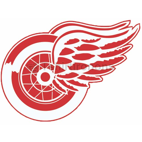 Detroit Red Wings T-shirts Iron On Transfers N140