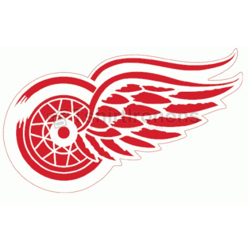 Detroit Red Wings T-shirts Iron On Transfers N146