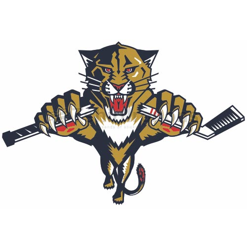 Florida Panthers T-shirts Iron On Transfers N161