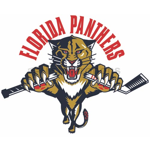 Florida Panthers T-shirts Iron On Transfers N163