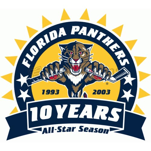 Florida Panthers T-shirts Iron On Transfers N165