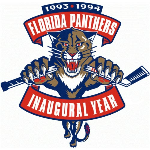 Florida Panthers T-shirts Iron On Transfers N167