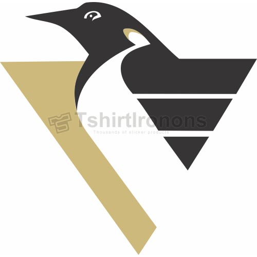 Pittsburgh Penguins T-shirts Iron On Transfers N302