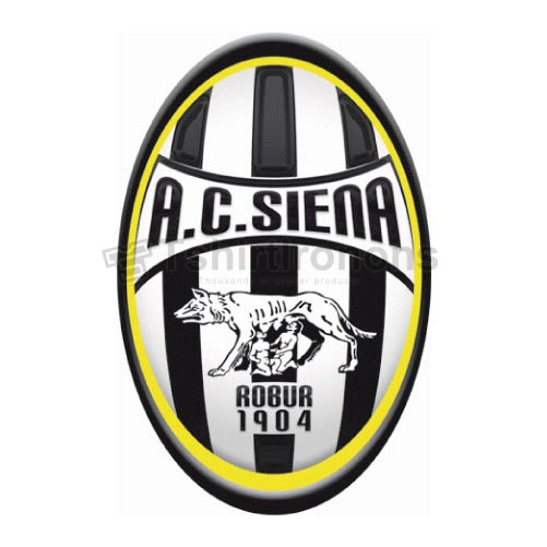 AC Siena T-shirts Iron On Transfers N3355