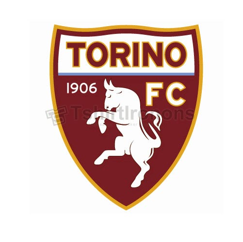 Torino FC T-shirts Iron On Transfers N3378