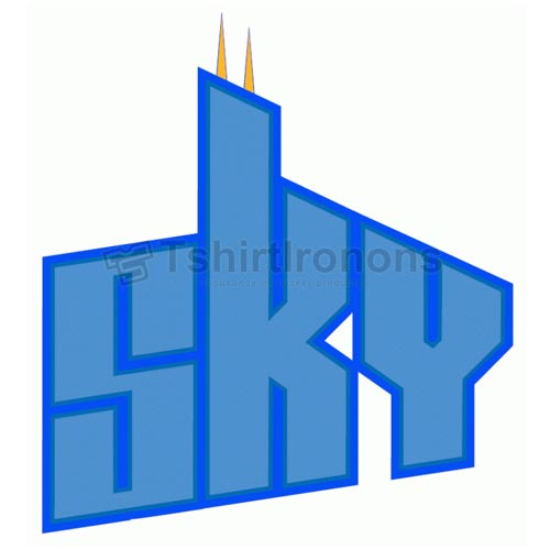 Chicago Sky T-shirts Iron On Transfers N5663