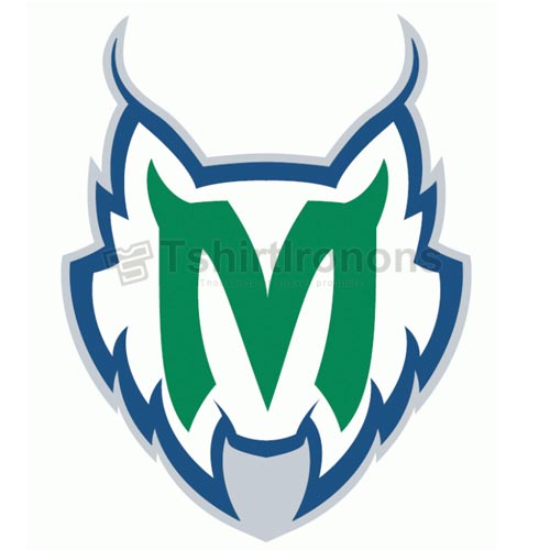 Minnesota Lynx T-shirts Iron On Transfers N5684
