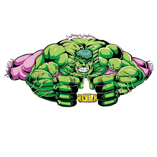 Hulk T-shirts Iron On Transfers N4534
