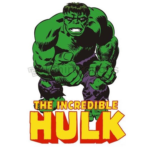 Hulk T-shirts Iron On Transfers N4535