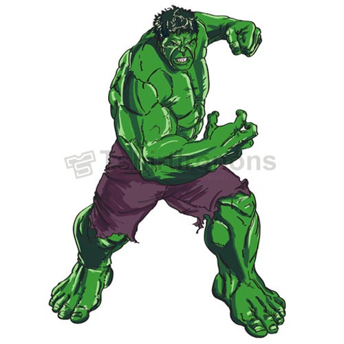 Hulk T-shirts Iron On Transfers N4538